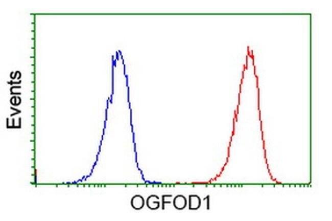 OGFOD1 Mouse anti-Human, Clone: OTI1D9, liquid, TrueMAB  100 µL; Unconjugated