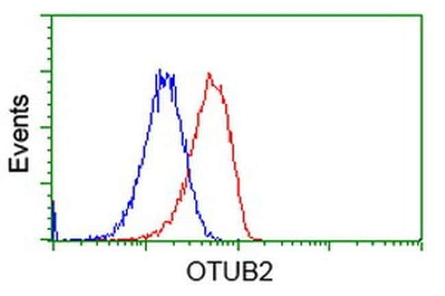 OTUB2 Mouse anti-Human, Clone: OTI6C7, liquid, TrueMAB  100 µL; Unconjugated