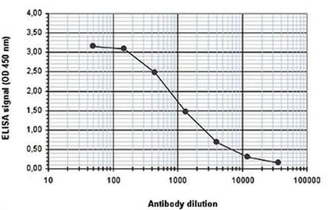 RUNX1T1 Rabbit anti-Human, Polyclonal, Invitrogen 100 µL; Unconjugated