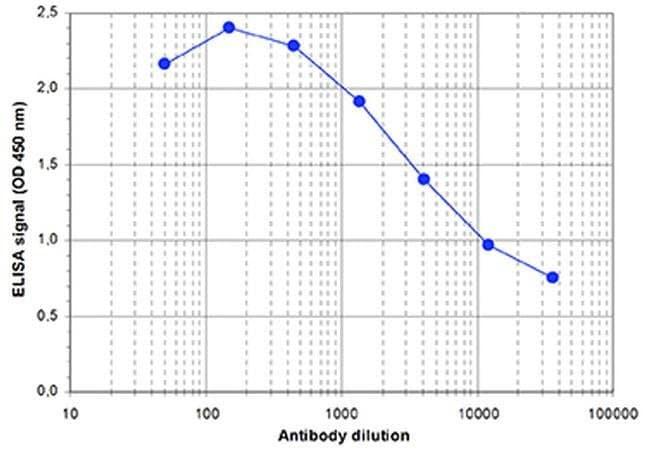 SETD1B Rabbit anti-Mouse, Polyclonal, Invitrogen 100 µL; Unconjugated