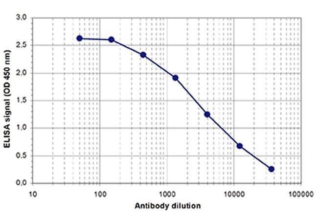 AGO1/AGO2 Rabbit anti-Human, Polyclonal, Invitrogen 100 µL; Unconjugated