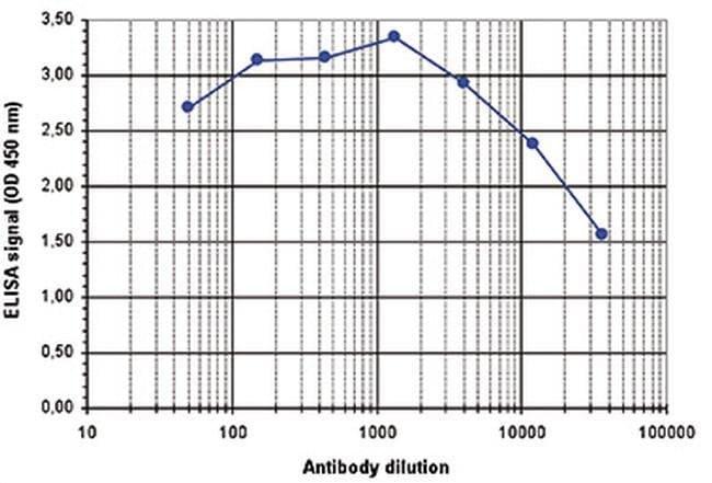 Acetyl-Histone H2B (Lys12) Rabbit anti-Human, Polyclonal, Invitrogen 50
