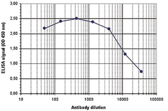 Acetyl-Histone H3 (Lys56) Rabbit anti-Human, Mouse, Polyclonal, Invitrogen