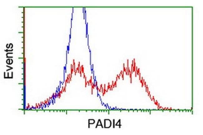 PADI4 Mouse anti-Human, Clone: OTI6A2, liquid, TrueMAB  100 µL; Unconjugated