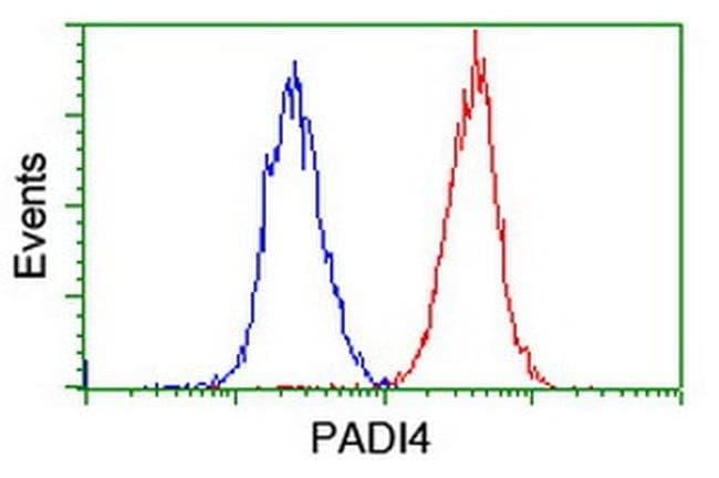 PADI4 Mouse anti-Human, Clone: OTI5B7, liquid, TrueMAB  100 µL; Unconjugated
