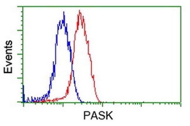 PASK Mouse anti-Human, Clone: OTI8G9, liquid, TrueMAB  100 µL; Unconjugated