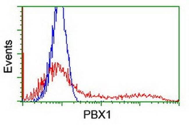 PBX1 Mouse anti-Human, Clone: OTI1C11, liquid, TrueMAB  100 µL; Unconjugated