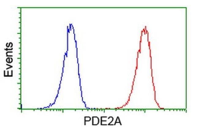 PDE2A Mouse anti-Human, Clone: OTI4D10, liquid, TrueMAB  100 µL; Unconjugated