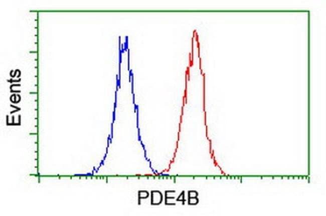 PDE4B Mouse anti-Human, Mouse, Clone: OTI1D12, liquid, TrueMAB  100 µL;