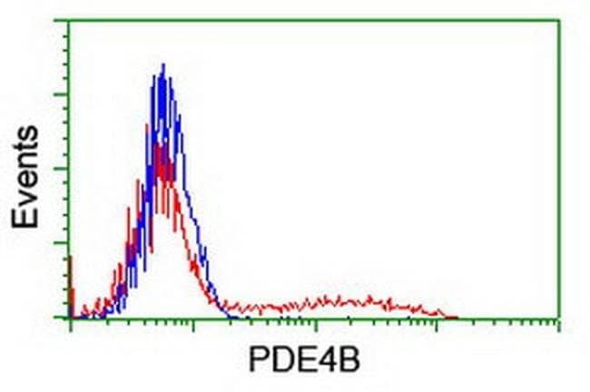 PDE4B Mouse anti-Human, Clone: OTI3B12, liquid, TrueMAB  100 µL; Unconjugated