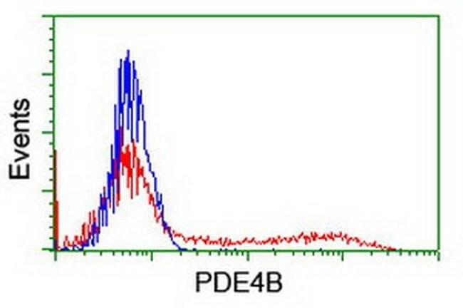 PDE4B Mouse anti-Human, Clone: OTI1B11, liquid, TrueMAB  100 µL; Unconjugated