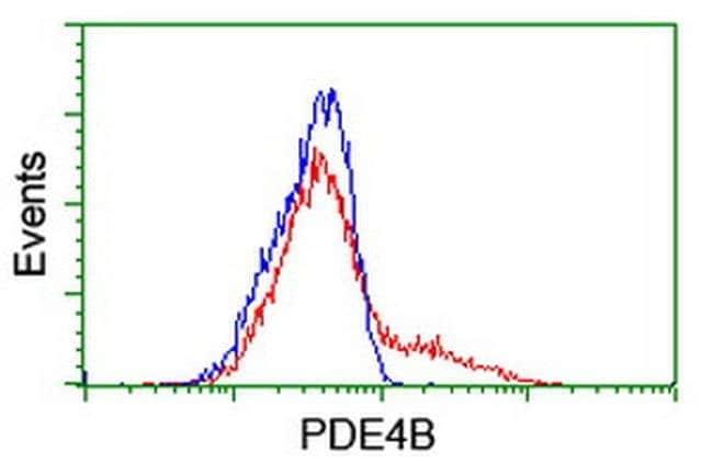 PDE4B Mouse anti-Human, Clone: OTI3A10, liquid, TrueMAB  100 µL; Unconjugated