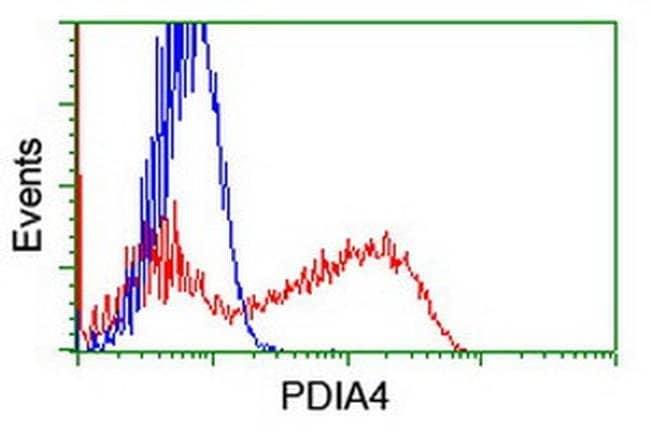 PDIA4 Mouse anti-Human, Clone: OTI6B6, liquid, TrueMAB  100 µL; Unconjugated