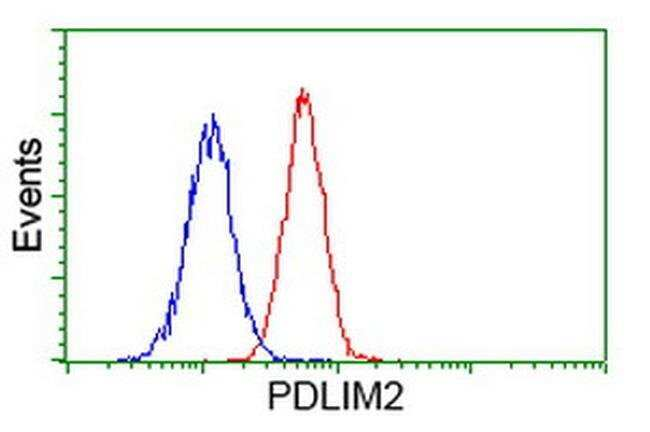 PDLIM2 Mouse anti-Human, Clone: OTI1D12, liquid, TrueMAB  100 µL;