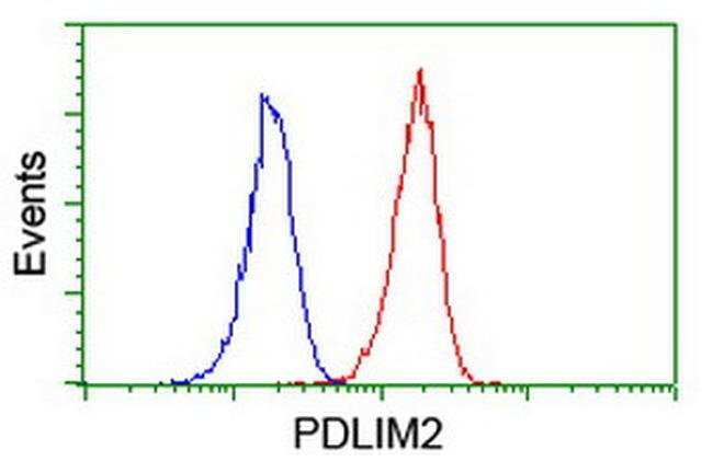PDLIM2 Mouse anti-Human, Clone: OTI14D9, liquid, TrueMAB  100 µL;