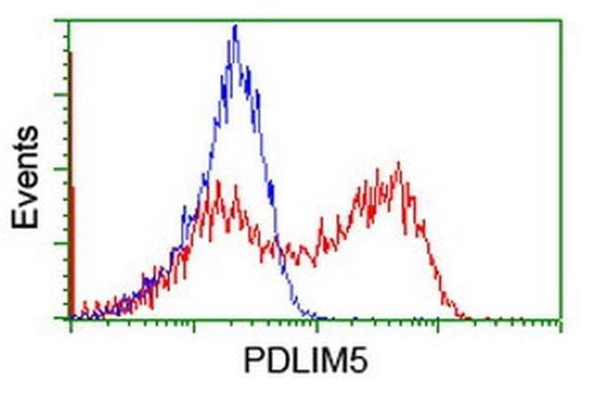 PDLIM5 Mouse anti-Human, Clone: OTI1H10, liquid, TrueMAB  100 µL;