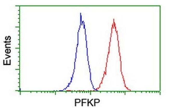 PFKP Mouse anti-Human, Clone: OTI2E8, liquid, TrueMAB  100 µL; Unconjugated