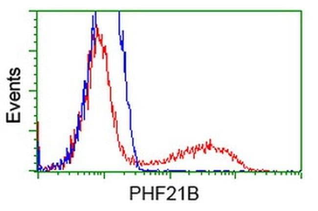 PHF21B Mouse anti-Human, Clone: OTI3G9, liquid, TrueMAB  100 µL; Unconjugated