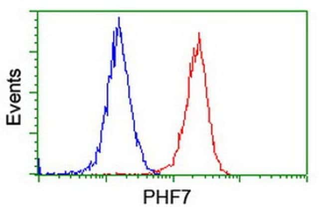PHF7 Mouse anti-Human, Clone: OTI1A2, liquid, TrueMAB  100 µL; Unconjugated