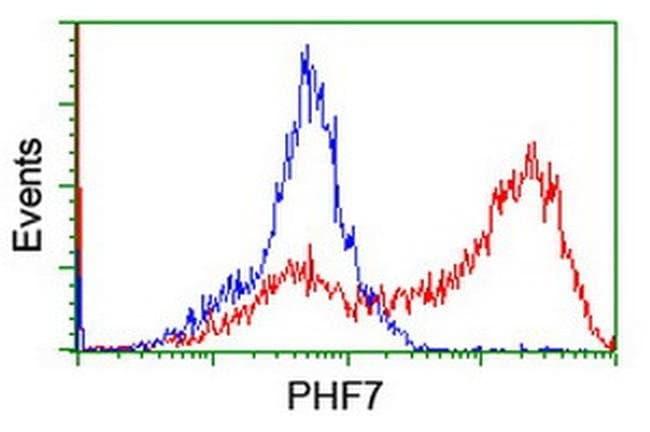 PHF7 Mouse anti-Human, Clone: OTI1B4, liquid, TrueMAB  100 µL; Unconjugated