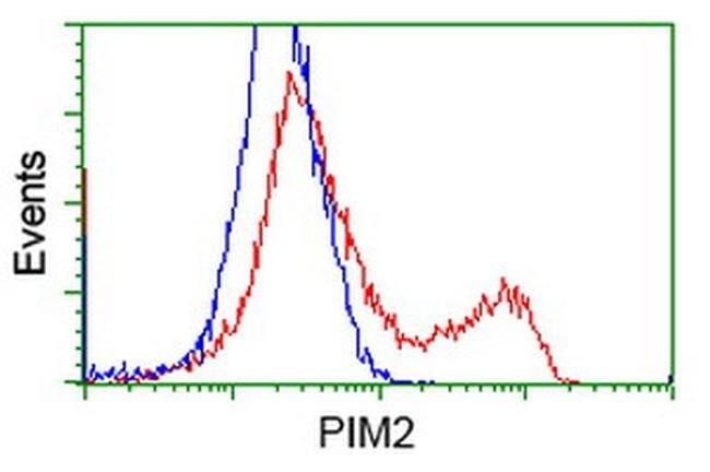 PIM2 Mouse anti-Human, Clone: OTI9A5, liquid, TrueMAB  100 µL; Unconjugated