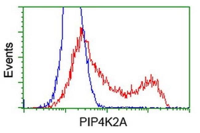 PIP4K2A Mouse anti-Human, Clone: OTI3D3, liquid, TrueMAB  100 µL;