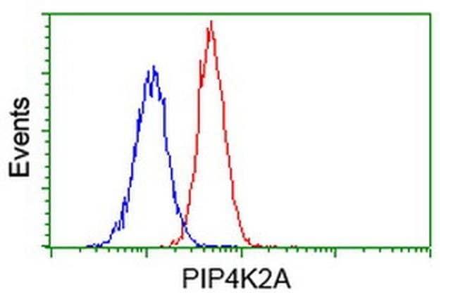 PIP4K2A Mouse anti-Human, Clone: OTI3A9, liquid, TrueMAB  100 µL;