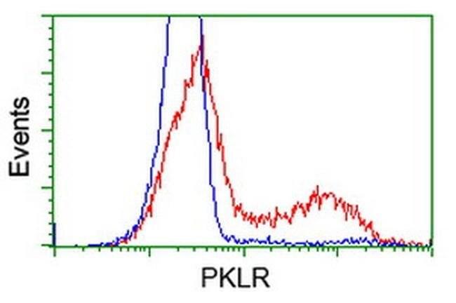 PKLR Mouse anti-Human, Clone: OTI1H4, liquid, TrueMAB  100 µL; Unconjugated