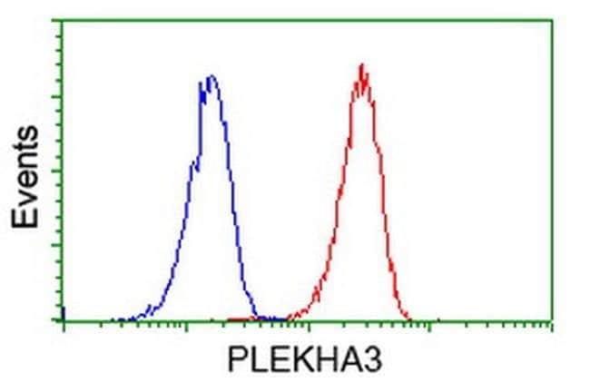 PLEKHA3 Mouse anti-Human, Clone: OTI2D1, liquid, TrueMAB  100 µL;