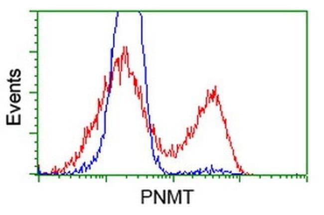 PNMT Mouse anti-Human, Clone: OTI2G4, liquid, TrueMAB  100 µL; Unconjugated