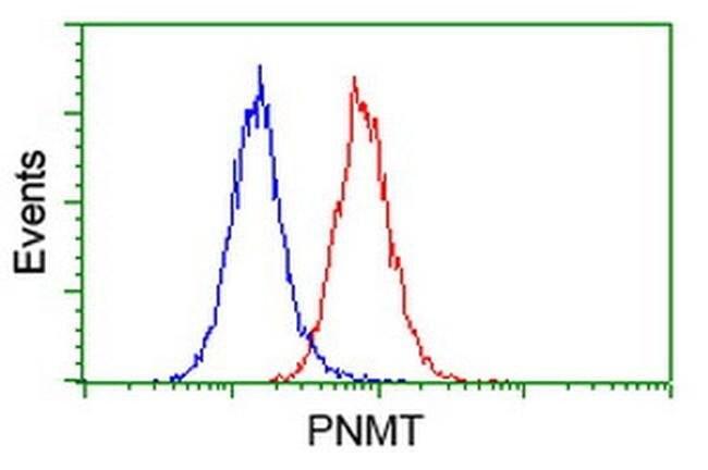 PNMT Mouse anti-Human, Clone: OTI1D5, liquid, TrueMAB  100 µL; Unconjugated