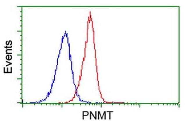 PNMT Mouse anti-Human, Clone: OTI1F3, liquid, TrueMAB  100 µL; Unconjugated