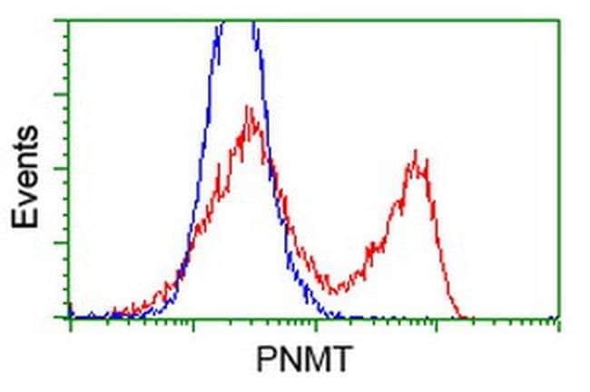PNMT Mouse anti-Human, Clone: OTI1B11, liquid, TrueMAB  100 µL; Unconjugated