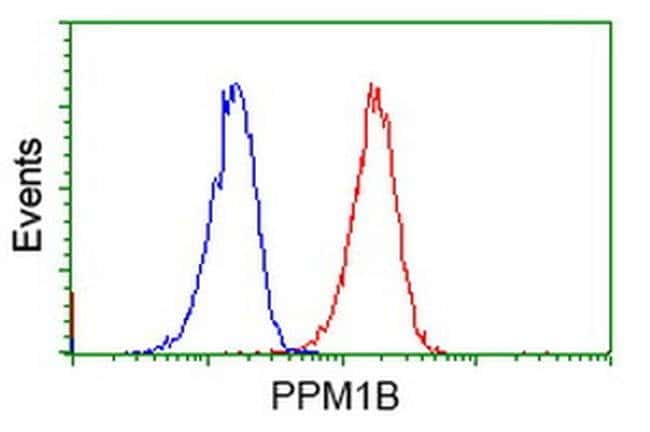 PPM1B Mouse anti-Human, Clone: OTI3E10, liquid, TrueMAB  100 µL; Unconjugated