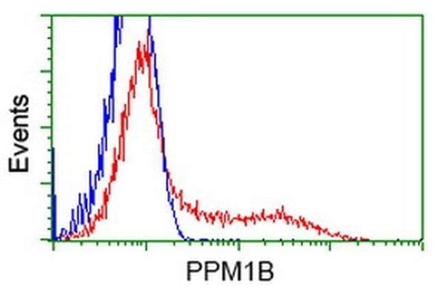 PPM1B Mouse anti-Human, Clone: OTI2D9, liquid, TrueMAB  100 µL; Unconjugated