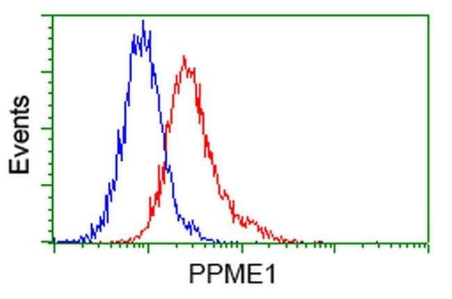 PPME1 Mouse anti-Human, Clone: OTI7F12, liquid, TrueMAB  100 µL; Unconjugated