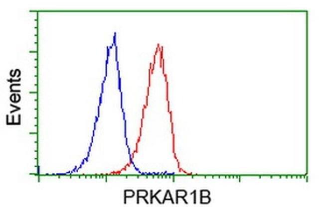 PRKAR1B Mouse anti-Human, Clone: OTI2A3, liquid, TrueMAB  100 µL;