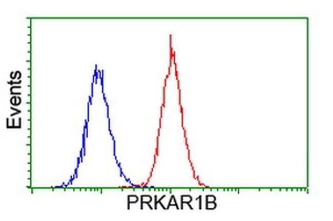PRKAR1B Mouse anti-Human, Clone: OTI9C5, liquid, TrueMAB  100 µL;