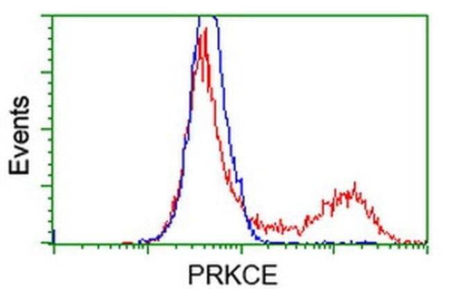 PRKCE Mouse anti-Human, Clone: OTI4D12, liquid, TrueMAB  100 µL; Unconjugated