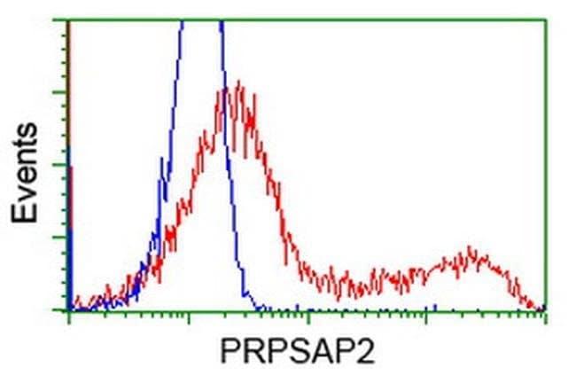 PRPSAP2 Mouse anti-Human, Clone: OTI1E3, liquid, TrueMAB  100 µL;
