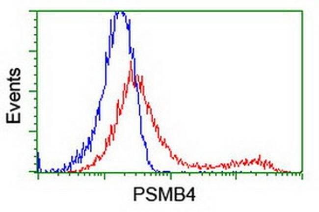 PSMB4 Mouse anti-Human, Clone: OTI5B5, liquid, TrueMAB  100 µL; Unconjugated