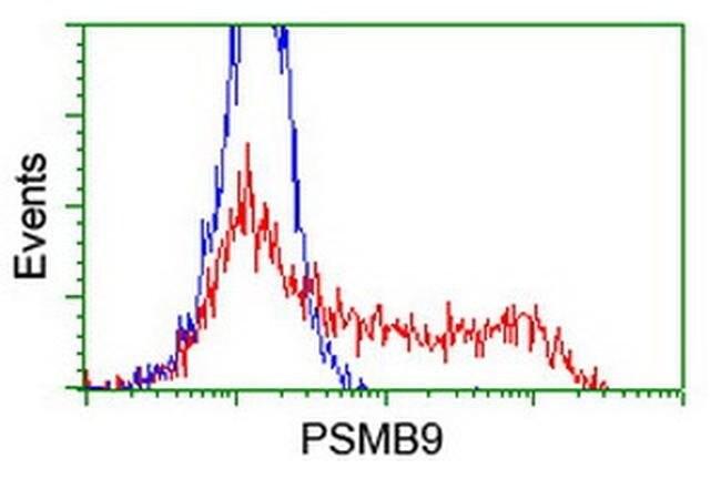 PSMB9 Mouse anti-Human, Clone: OTI1C4, liquid, TrueMAB  100 µL; Unconjugated
