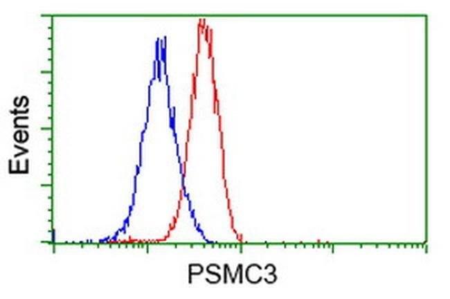 PSMC3 Mouse anti-Human, Clone: OTI1G4, liquid, TrueMAB  100 µL; Unconjugated