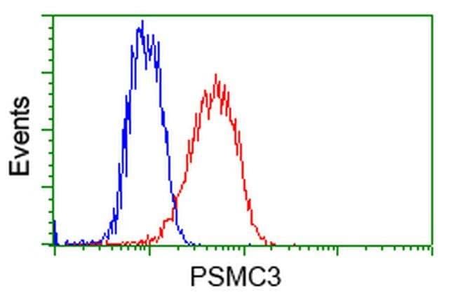 PSMC3 Mouse anti-Human, Clone: OTI8D6, liquid, TrueMAB  100 µL; Unconjugated