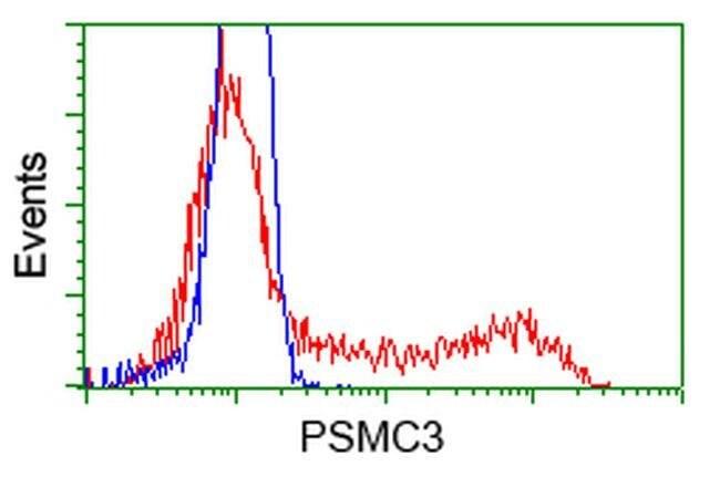 PSMC3 Mouse anti-Human, Clone: OTI7D1, liquid, TrueMAB  100 µL; Unconjugated