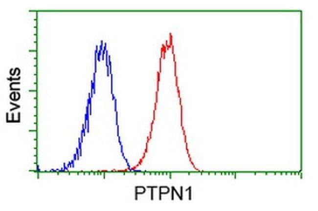 PTPN1 Mouse anti-Human, Clone: OTI1B4, liquid, TrueMAB  100 µL; Unconjugated