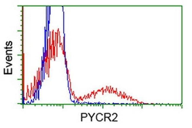 PYCR2 Mouse anti-Human, Clone: OTI3D1, liquid, TrueMAB  100 µL; Unconjugated