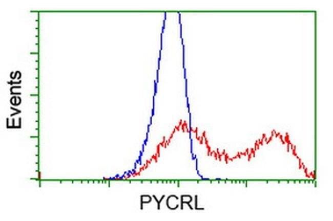 PYCRL Mouse anti-Human, Rat, Clone: OTI1B12, liquid, TrueMAB  100 µL;