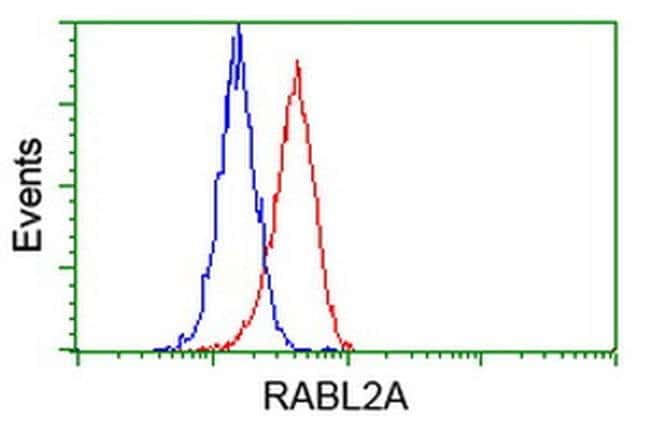 RABL2A Mouse anti-Human, Clone: OTI4A8, liquid, TrueMAB  100 µL; Unconjugated