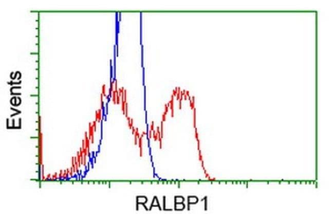 RALBP1 Mouse anti-Human, Clone: OTI11C6, liquid, TrueMAB  100 µL;